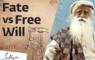 運命と自由意志のセオリー ~ 運命を受け入れるために